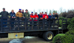 Observer courtesy photo Williston Scouts Collected more than 500 Christmas trees on Jan. 2 in the annual pickup, the troop's biggest fundraiser of the year.