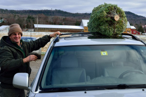 Farmer Mike secures a tree for a customer at Isham's Family Farm in Williston on December 4th.