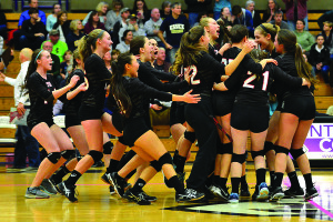 Let the celebration begin! The CVU girls win the first VPA sanctioned volleyball championship over Essex at St. Michael's College on Saturday.