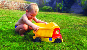 A well-maintained lawn is both pleasing to the eye and improves water quality.
