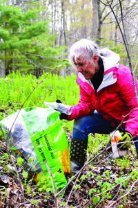 "Candace Pratt uses her ""unapproved bag"" to clean up Old Creamery Road on Vermont's Green Up Day 2017."