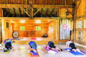 Courtesy photo by Lynn Clauer The Isham Barn on 3515 Oak Hill Road will host a gentle yoga class every Wednesday, 11 a.m. to noon, to benefit the Williston Community Food Shelf. All are welcome.