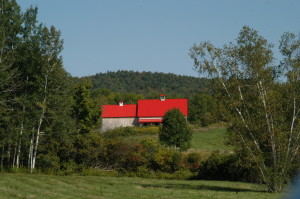 Observer photo by Jason Starr The Williston Development Review Board will make a visit to this barn on South Road on Oct. 24 to assess its historical significance and determine whether it can be used to host weddings.