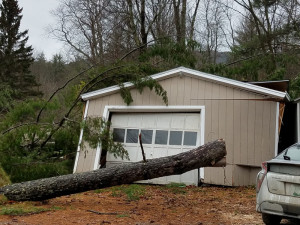 Observer courtesy photo by Fred Kenney A large pine tree blew over in the Monday storm, destroying this garage and narrowly missing the car parked beside it on Nashville Road in Jericho.