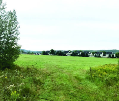 Meadow with homes beyond it